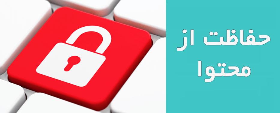 افزونه حفاظت از محتوا WP Content Protection Manager